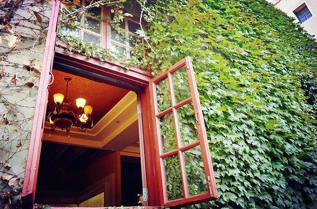窗子外和窗子里