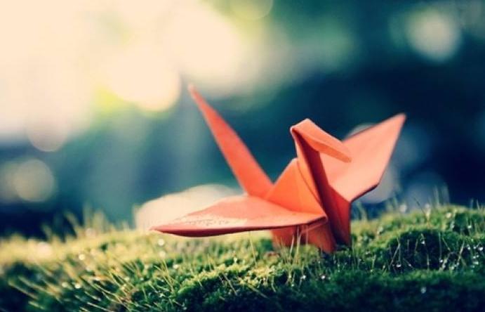 千纸鹤飞不过的距离