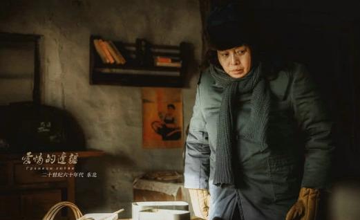 安家:丁嘉丽成功演出潘贵雨反面形象,戏外却失败活成反面教材