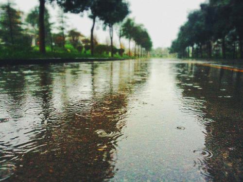 沿着雨的足迹